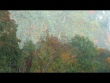 Золотая осень моя - Валерий Ковтун - (аккордеон с симфоническим орк.)