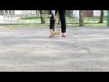 Щенки чихуахуа - тренировка (ПРОДАЖА)