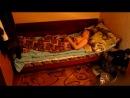 Как я сплю ( Vine by Serpihin )