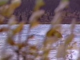 Alaska: Silence & Solitude, Dick Proenneke (2004)