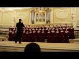 Концерт в Капелле 16.03.2014 Сергей Баневич
