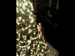 Elizabeth Lail: Рождественская ёлка семьи Лэйл (2010)