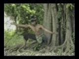 Mande Mude Silat Vol 2 Harimau.avi