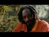 Отрывок из фильма «Очень страшное кино 5» Прогулка в лесу