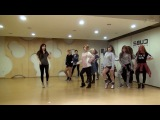 4MINUTE - Whatcha Doin' Today - mirrored dance practice video