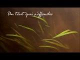 Mylene Farmer (Tu Ne Le Dis Pas Lyrics)