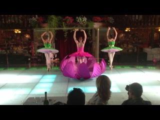 Шоу - балет Holiday (Цветок любви)