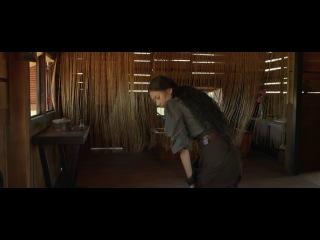 Однажды во Вьетнаме (2013). Фильмы по боевым искусствам.