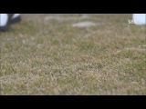 Наследники. Под тяжестью короны / Sangsok Jadeul / The Heirs (12/20) (HDTV) [Batafurai Team]