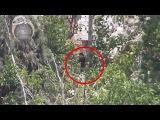 Сирия снайпер Муджахида снимает асадиста