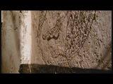 Ламу. Магический Город из Камня. Мировые сокровища культуры