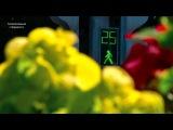 Видео про черкесск