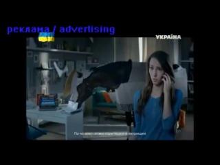 ТВ реклама Яндекс