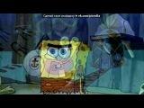 «Картинки Sponge Bob™ № 2» под музыку Патрик, Губка Боб и его родители - В Путь. Picrolla