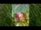 08.06.2014 ТРЙЦЯ под музыку Dj Fedyay aka Slava - KILL THE FUCK 2013 Track 9. Picrolla
