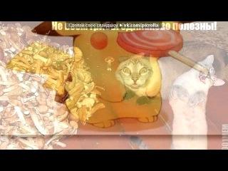 «С моей стены» под музыку DJ-EMYLEN (http://mp3xa.net) - Даёш маладёш(Electro RMX). Picrolla