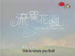 Сад падающих звёзд / Liu xing hua yuan / Meteor Garden - 1 сезон 17 серия (Озвучка)