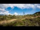 Dissent Labs - A Mountain Bike Ride - Dylan Sherrard - Bas van Steenbergen - Spencer Graf