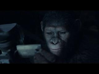 Планета обезьян: Революция 3D