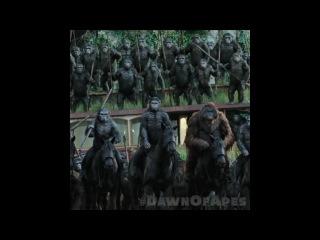 Рассвет планеты обезьян: Революция — Тизер (2014) [HD]
