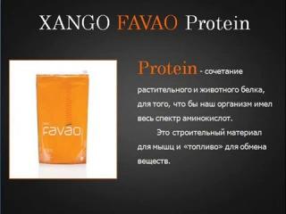 Результаты от FAVAO