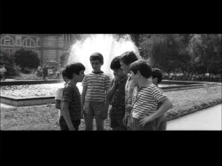 Таралежите се раждат без бодли (1970)