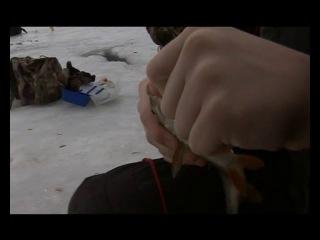 Диалоги о рыбалке. Зимняя рыбалка.09.Углич. Мормышка-плотва, подлещик. Блесна-щука.[2008, DVDRip].