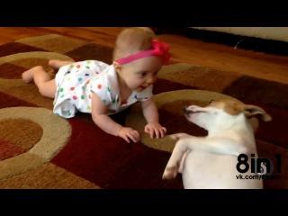Собака учит ребёнка ползать :D  / Dog teaches Baby to Crawl