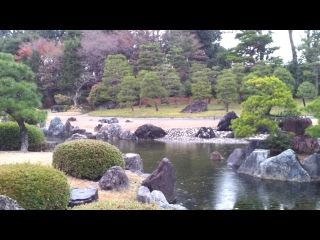 Сад замка Nijo, Киото