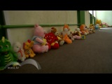 МОСТ ТВ Валерия Никитина.. 30 июня 2014 года