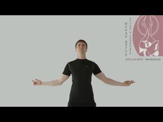 Даниил Маркин. Шея журавля. Медицинский цигун для шейного отдела