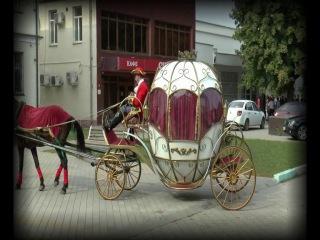 Свадебное агентство Золушка. Карета в Тереке. Свадьба в Тереке.