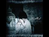 Sleepthief ft Caroline Lavelle - Rainy World