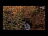 Gal Abutbul  Sarah Russell - You Have Realised (Uplifting Mix)