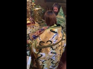 Храм Рождества Пресвятой Богородицы с. Верхнее Мячково.День Святаго Духа Херувимская