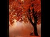 An Autumn Fairy ( dedicated to Marilyn MONROE )