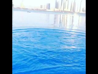 Сибирь в Dubai 2013
