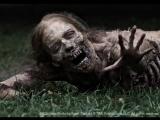 The Walking Dead soundtrack (Mr. Splitfoot - Paris Motel)