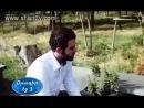 Сирийский армянин Каро