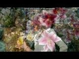 «С моей стены» под музыку Дарина Кирилко VS Марьяна Чорная  - ОЙ, У ВИШНЕВОМУ САДУ - «Бои» -