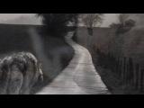 «Со стены ВОЛКИ» под музыку Шансон - Одинокий волк ( Песня про меня ). Picrolla