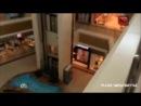 НТВ: В Армавире пикантный танец голого Тарзана обернулся громким скандалом 16.05.14