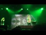 Жар-птица, Ассаи, 31.05.2014