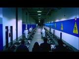 Штамм / The Strain.1 сезон.Трейлер (2014) [HD]
