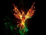 Анастасия Царькова - Восстань словно Феникс (Conchita Wurst - Rise like a Phoenix Cover)