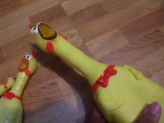 Китайские курицы - игрушки