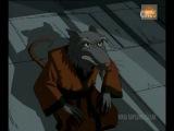 Ninja Kaplumbağalar İzle - 2. Sezon 25.Bölüm