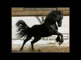 Фризы под музыку T-Killah &ampamp DJ Miller feat. Samurai - 1234 (Extended Mix) . Picrolla