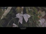 Витя и Ксюша, свадебный клип, видеосъёмка Харьков, Киев, видеооператор свадьба