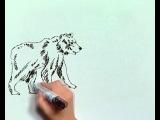 Art и факты. Как спастись от хищников? http://vk.com/utronovoe